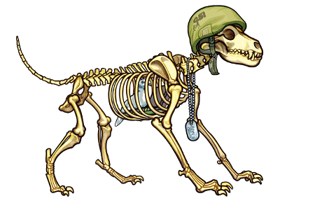An anatomic drawing of Dog Skeleton wearing dog tags and an army helmet